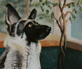 Hogan, Oil portrait of German Shephard, 20x24